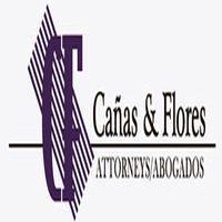 Canas & Flores
