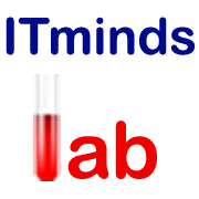 IT Mindslab