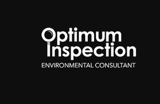 Optimum Inspection