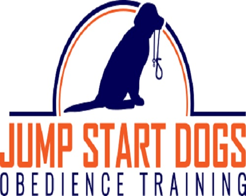 Jump Start Dog Training