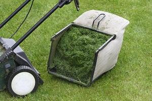 Leander Lawn & Landscape