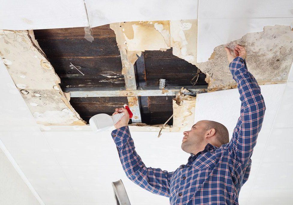 Bay Area Asbestos Removal