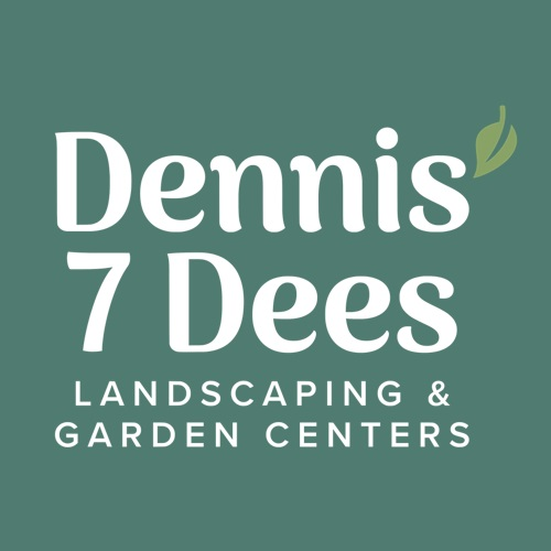 Dennis 7 Dees