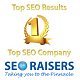 SEORAISERS Top SEO Company in Chandigarh