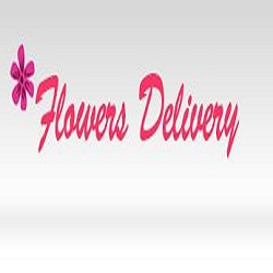 Same Day Flower Delivery Tampa FL