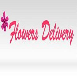 Same Day Flower Delivery Houston TX