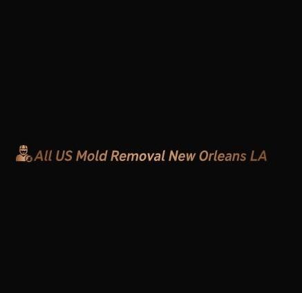 All US Mold Removal Denver