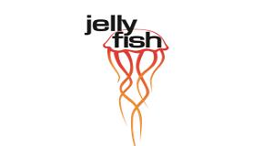 jellyfish brisbane