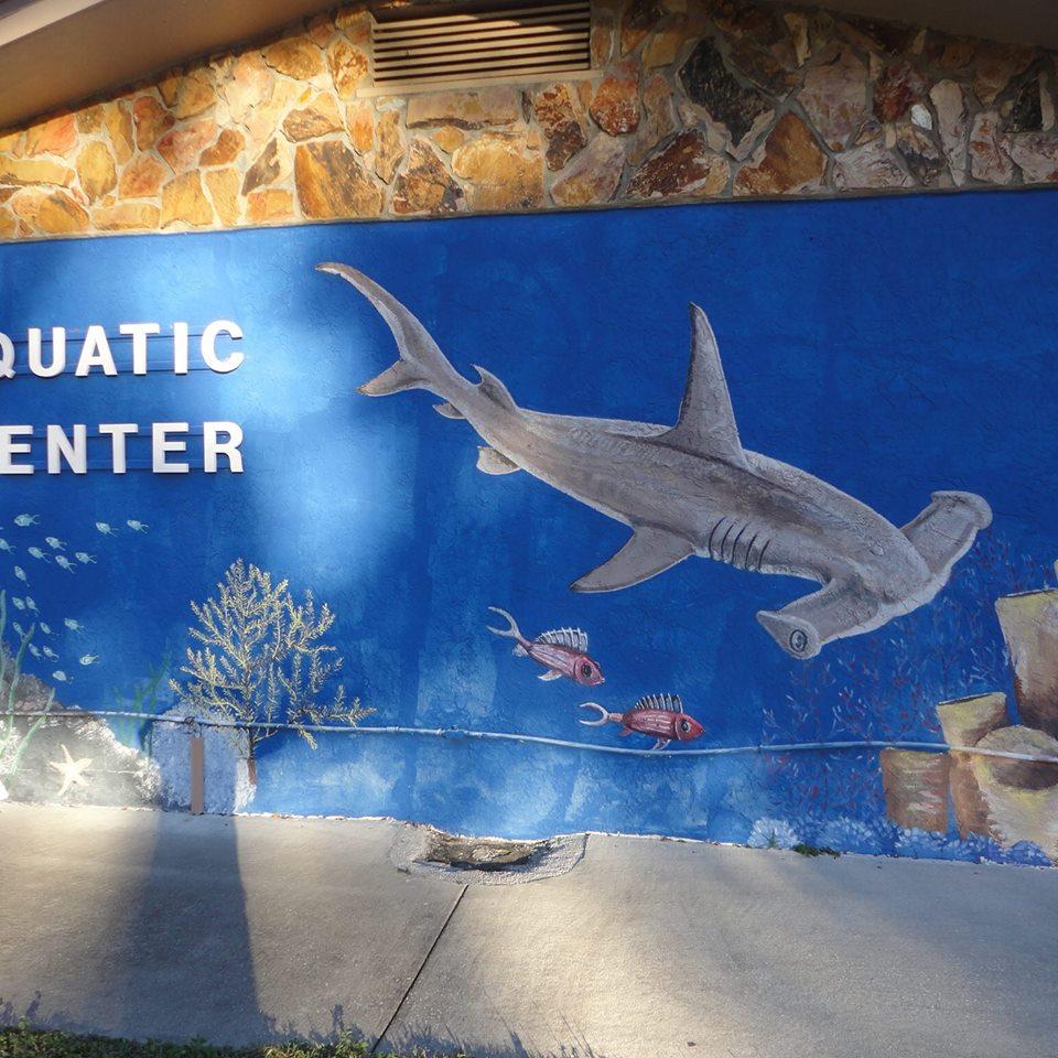 Aquatic Center of Ocala