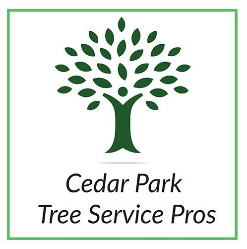 Cedar Park Tree Service Pros